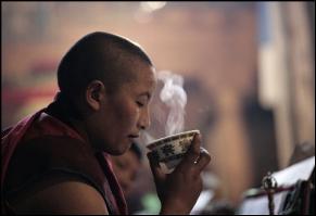 синий тибетский чай